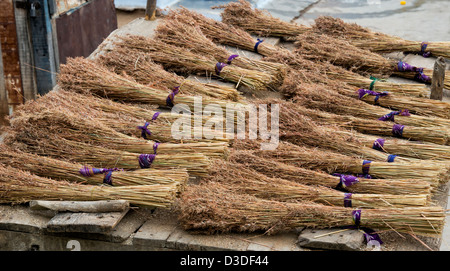 Indian Grass reed brushes on the back of a bullock cart in a rural indian village. Traditional indian sweeping brush. - Stock Photo