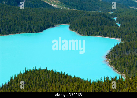 Peyto Lake, a glacier-fed lake in the Canadian Rockies - Stock Photo
