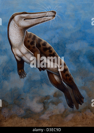 Ambulocetus natans, an early cetacean that lived in the Early Eocene epoch during the Cenozoic Era - Stock Photo
