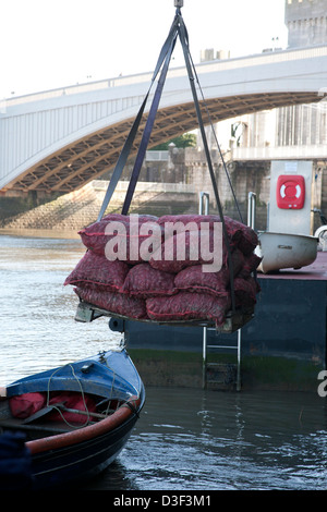 Mussels being lifted from a boat on to the quayside,  Conwy in North Wales, UK - Stock Photo