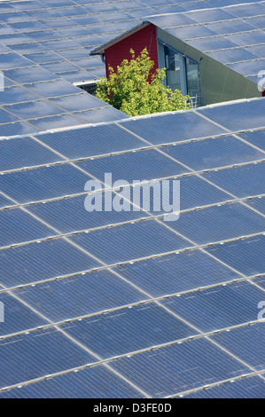 Freiburg, Germany, solar panels on the roofs in Vauban - Stock Photo