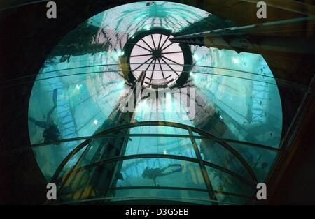 (dpa) - Two divers are seen through the glass roof of the lift inside the 'Aquadome' in the lobby of the future - Stock Photo