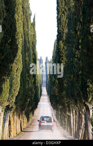 europe, italy, tuscany, chianti, white road with cypresses - Stock Photo