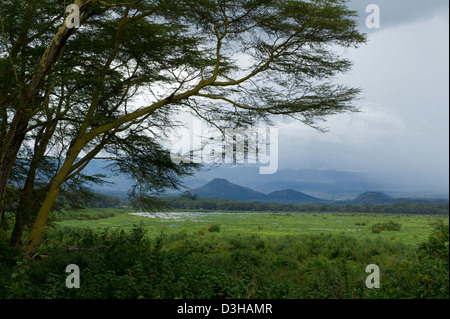 Lake Naivasha, Kenya - Stock Photo
