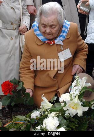 (dpa) - Concentration camp survivor Stefania Osinska puts down flowers at the concentration camp memorial place - Stock Photo