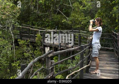 Birdwatching from the walkway at Shimba Lodge, Shimba Hills National Reserve, Kenya - Stock Photo