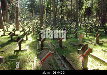 (dpa) - Stone crosses commemorate Polish soldiers killed in action during the First World War at the Antakalnis - Stock Photo