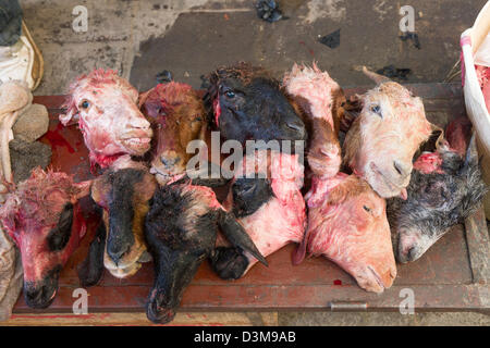 Severed goats heads for sale in the Medina, Fes, Morocco - Stock Photo