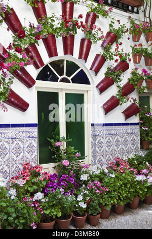 typical andalusian patio with flowers at the festival de patios de cordoba humanity heritage festivity in