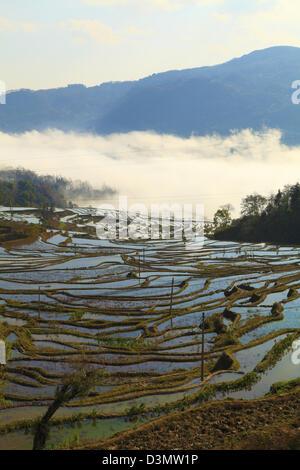 China, Yunnan, Yuanyang, rice terraces, - Stock Photo