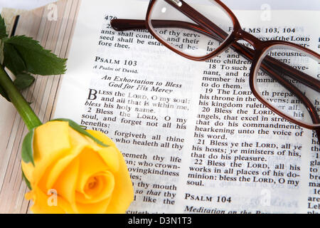 Holy Bible opened to the book of Psalms chapter 103 with a yellow rose and reading glasses. - Stock Photo