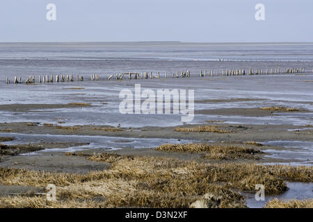 Wadden Sea, the intertidal zone in the southeastern part of the North Sea - Stock Photo