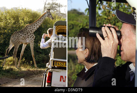 The picture combo shows German President Horst Koehler (R) and his wife Eva taking part in a safari at the Chobe - Stock Photo