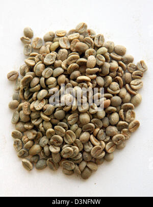The picture shows a sample of green coffee in Neumann Kaffee Group's raw coffee centre in Hamburg-Wilhelmsburg, - Stock Photo