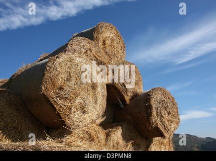 bale of hay under blu sky - Stock Photo