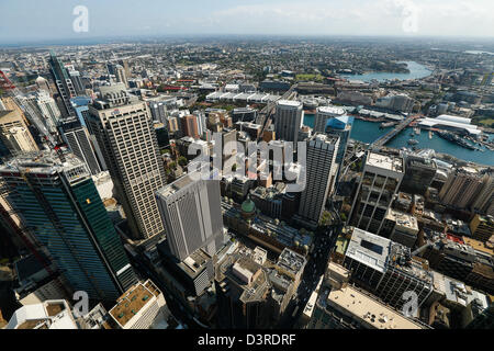 View from the Sydney Tower - Stock Photo