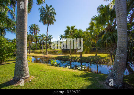 Fairchild Tropical Botanic Garden In Coral Gables In The