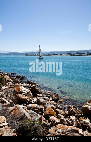 Sailing boat in Featherbed Nature Reserve, Knysna, Natural Heritage Site, South Africa - Stock Photo