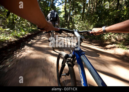 Mountain biking in Harkville Forest, South Africa, personal perspective - Stock Photo