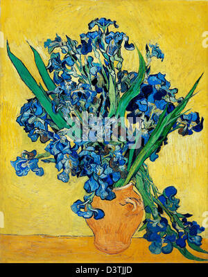 Vincent van Gogh, Irises 1890 Oil on canvas. Van Gogh Museum, Amsterdam, Netherlands. - Stock Photo