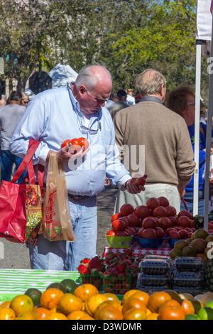 Bakewell Food Market