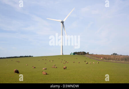 Large single wind turbine owned by Ecotricity at Shooter's Bottom, Chewton Mendip, Somerset, England - Stock Photo