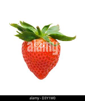 Strawberry. - Stock Photo