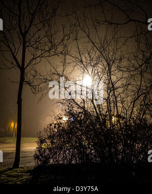 Street lights illuminate trees and bushes on a cold, damp, misty evening, WOrcestershire, UK - Stock Photo