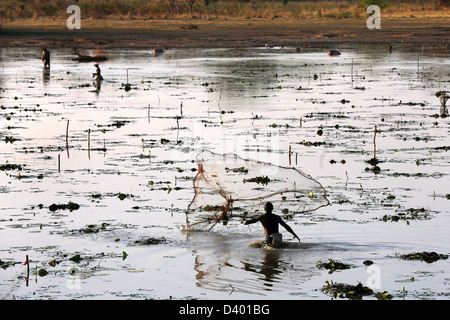 African men fishing throwing cast net in a lake, Burkina Faso, Africa - Stock Photo