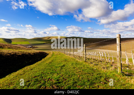 A wide grassy track and a barbed wire fence set amongst rolling green hills on the Pewsey Downs in Wiltshire, UK - Stock Photo