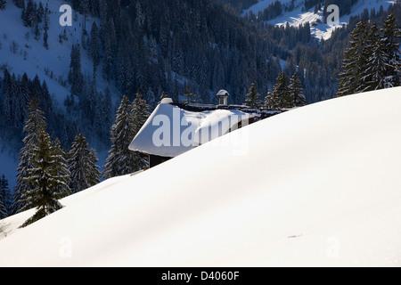 Wooden farmhouse hidden in deep snow - Stock Photo