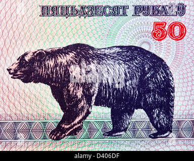 50 rubles banknote, Bear, Belarus, 1992 - Stock Photo