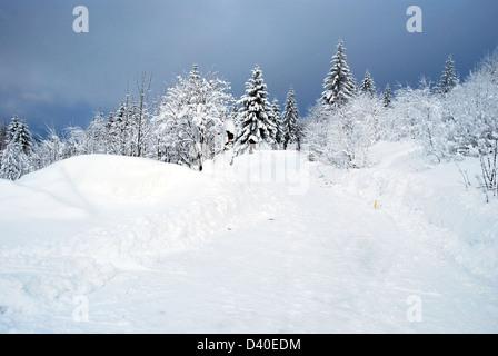 winter Moravskoslezske Beskydy mountains near Bily kriz on czech-slovakian borders with snow covered hiking trail, - Stock Photo