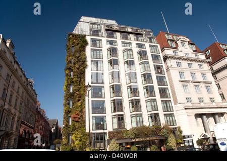 athenaeum hotel central london stock photo royalty free. Black Bedroom Furniture Sets. Home Design Ideas
