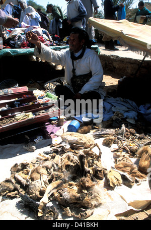 Animal skins, horns and other mumbo-jumbo used by a 'hakim' in Morocco - Stock Photo