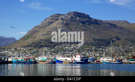 Fishing boats in Hout Bay Harbour, near Cape Town, South Africa. - Stock Photo