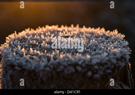 Early morning frost on a fence post - Stock Photo
