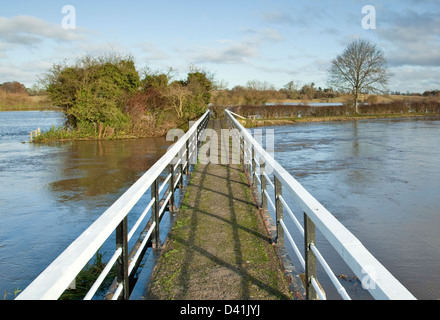 Footbridge over severe flooding from the rising river trent in Alrewas Staffordshire - Stock Photo