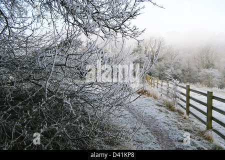 Winter in the countryside. - Stock Photo