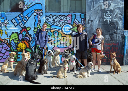Dog walkers in Long Island City Queens, New York in front of graffiti wall at 5 Pointz. - Stock Photo