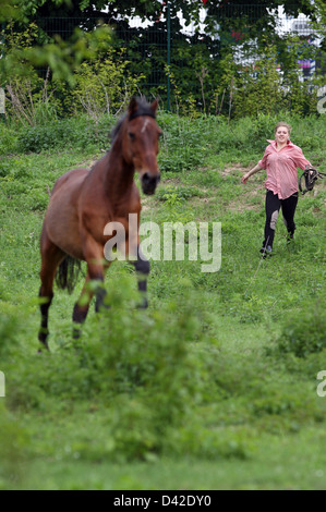 Muehlenbeck, Germany, girl tries to catch her horse on pasture - Stock Photo
