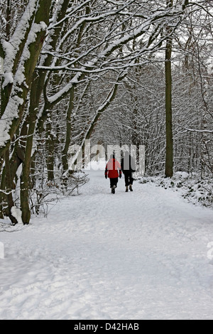 WALKERS ON A WOODLAND PATH IN WINTER. BISHOP'S STORTFORD HERTFORDSHIRE UK. - Stock Photo