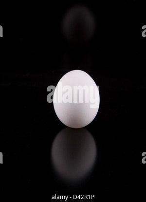 Berlin, Germany, one egg on a black background - Stock Photo