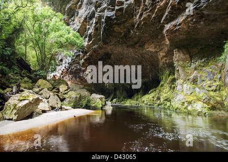 Oparara River Arch. Image taken on the far, and normally inaccessible, side of the arch in the Kahurangi National - Stock Photo