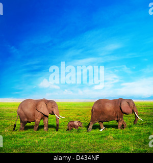 Elephants - African elephant family on African savanna in Amboseli, Kenya, Africa - Stock Photo