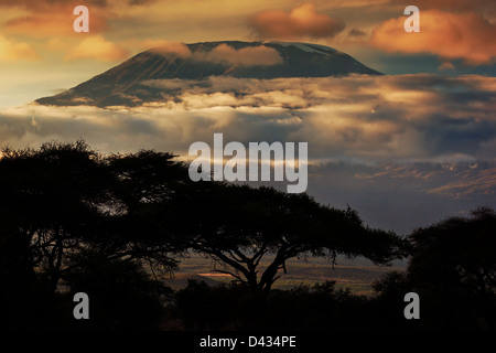 Africa landscape - Mount Kilimanjaro and clouds line at sunset, view from savanna landscape in Amboseli, Kenya, - Stock Photo
