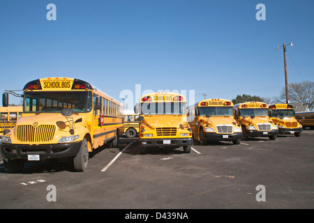 Public school buses lined up and parked in school bus parking lot - Stock Photo