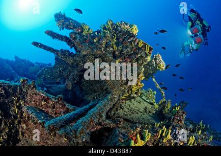 Shipwreck Francesca di Rimini and scuba diver and anti-aircraftgun, Island Kaprije, Sibenik, Vodice, Croatia,  Mediterranean - Stock Photo