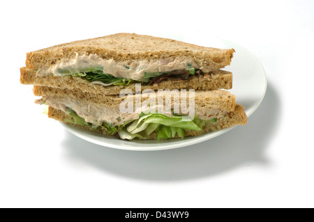 Aninimal Book: Chicken tuna salad sandwich lunch with French Fries Stock ...