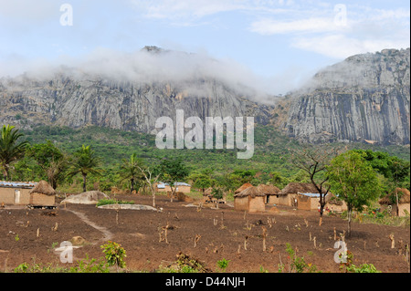 ANGOLA Kwanza Sul, food crops like maize corn or cassava, farming in village near Waku Kungo - Stock Photo